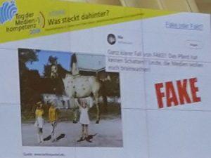 Tag der medienkompetenz Quiz Pippi Langstrumpf trägt Pferd Kein Schatten - Fake!