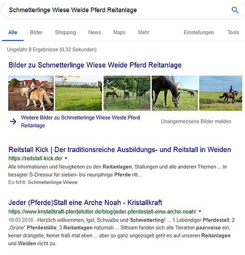 Unbubble.eu ist tot - Google-Suche mit falscher Trefferreihenfolge