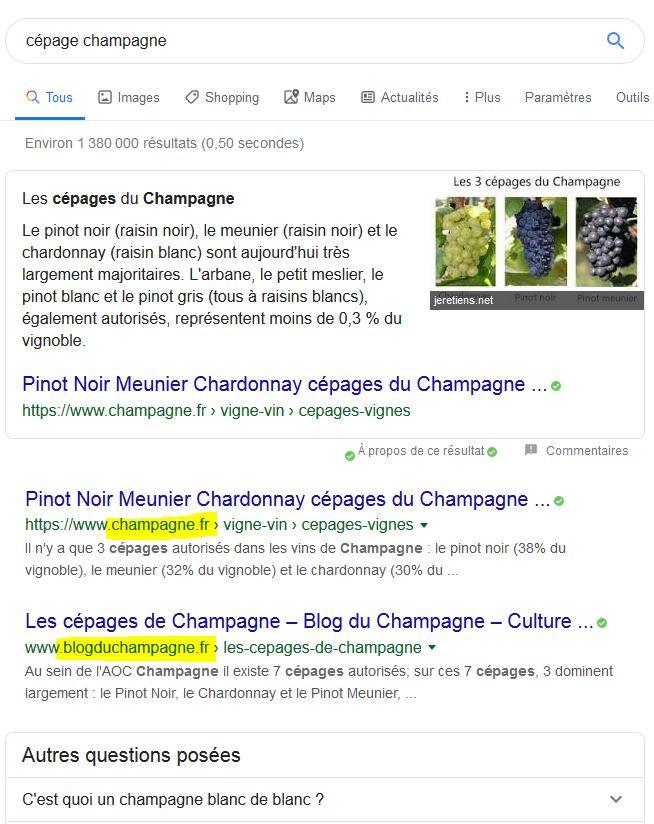Französsiche Ergebnisse ohne site: aber in französischer Spracheisntellung
