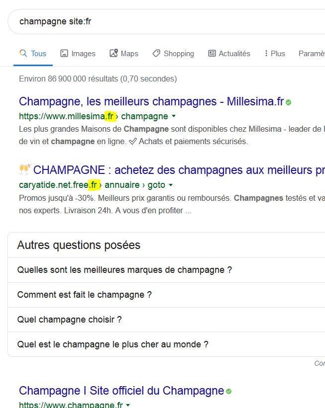 Treffer auf Französisch mit TLD fr und Sprache französisch Französischer Ergebisse at its best ;-)