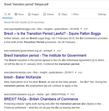 Screenshot britisches Google mit Befehl filetype zu Brexit