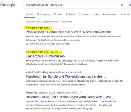 Screenshot zu site:-Suche für Profi-Wissen.